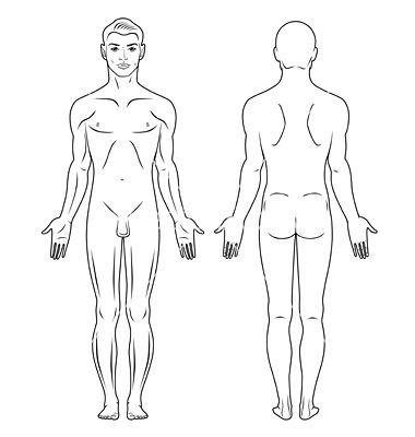Naked standing man vector 650393 - by arlatis on VectorStock®