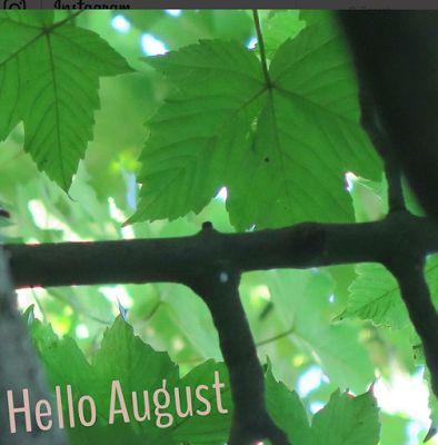 Life of Tabitha BLOG: NEW BLOG POST   Good Morning World#7