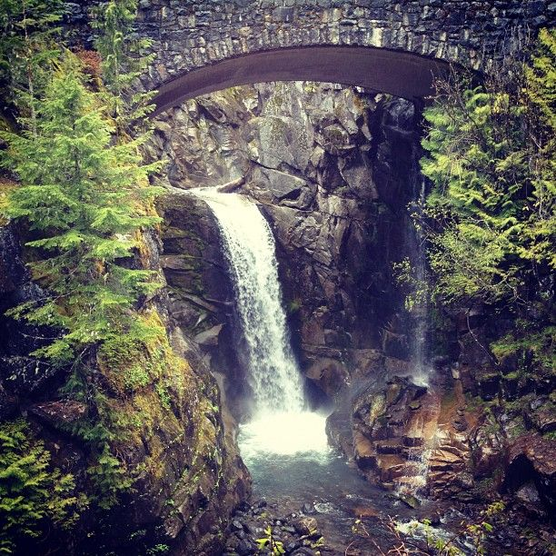 Mount Rainier National Park in Ashford, WA.  It was established on March 2, 1899 as the fifth national park in the United States.  Find more info @ http://en.wikipedia.org/wiki/Mount_Rainier_National_Park Bring a hammock to hang with @ http://hammocktown.com/