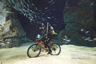 Идеальное путешествие: Хорватия предлагает велосипедные прогулки под водо...