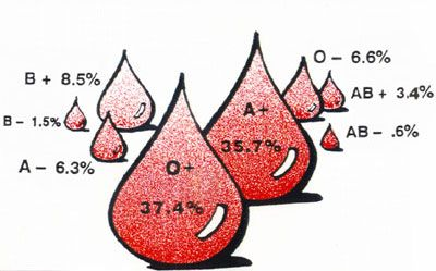 The rarest blood type in the United States is AB with a negative Rh factor.  One person in every 167	 people have this type amounting to .6% of the population.  The most common blood type is O with a positive RH factor which is had by 37.04% of the population or one in every three people.