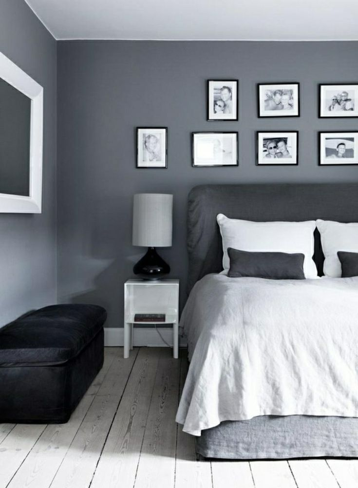 Gray wall paint for a harmonious and modern wall design