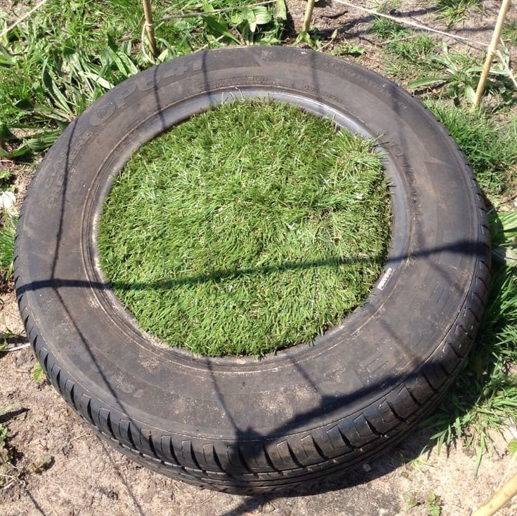 Recycled tyre seat; made from an old tyre filled with dirt and green astro turf tucked into the tyre!