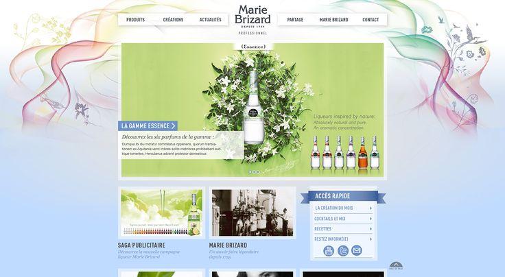 Katia Robinson web-designer Lyon | Site Professionnel Marie Brizard