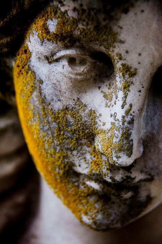 Gesicht der Engelsstatue bedeckt im Moos