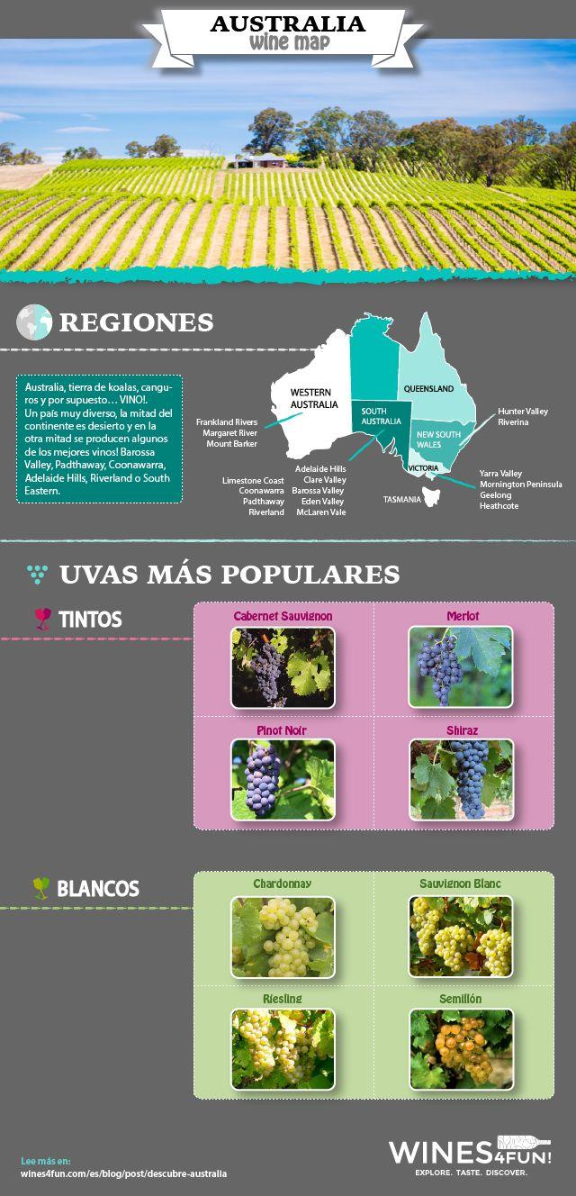 Australia, tierra de koalas, canguros y por supuesto… VINO!. Descubre más sus regiones vitivinícolas y sus vinos en http://wines4fun.com/es/blog/post/descubre-australia