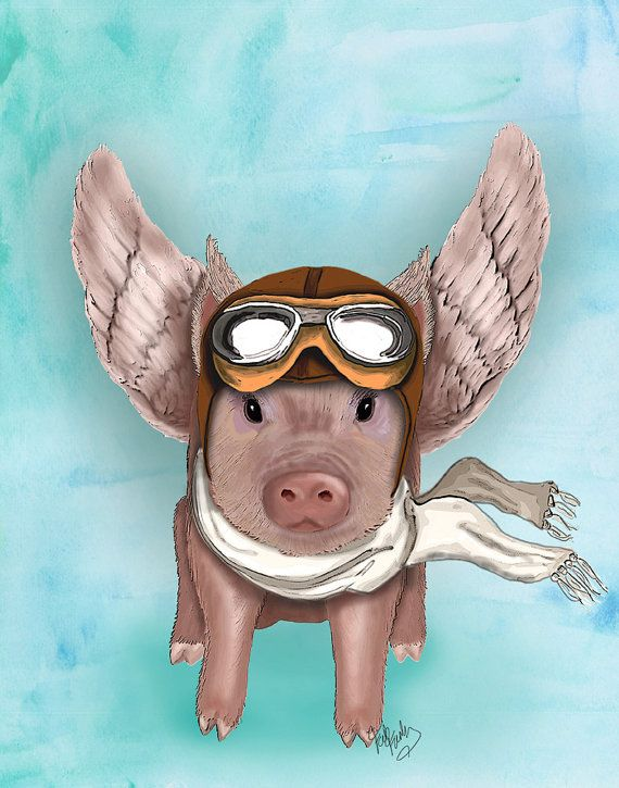 Aviator Piggy 14x11  Flying pig illustration flying by LoopyLolly, $36.00