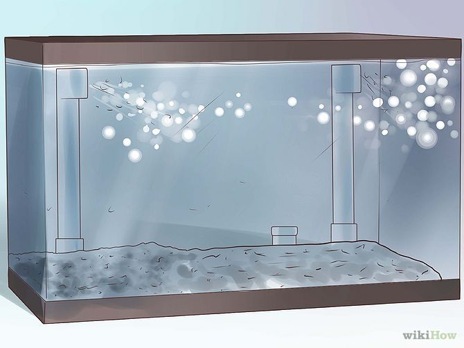 17 best images about akwarium on pinterest aquarium for Fish tank bottom filter