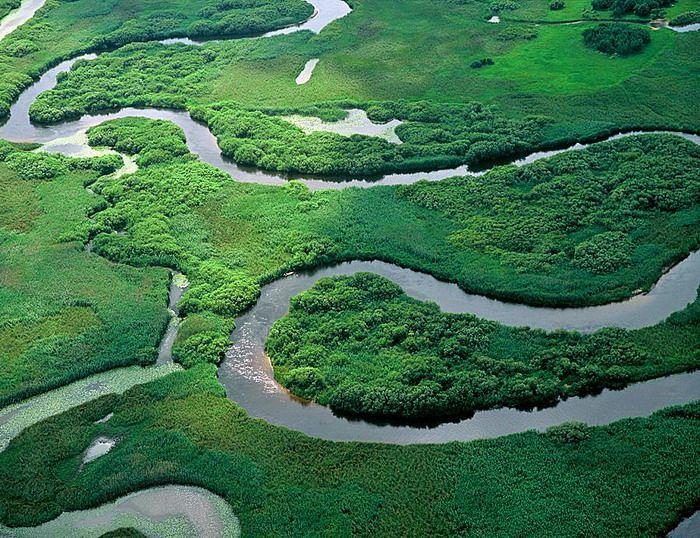 Biebrzański Park Narodowy, woj. podlaskie /   The National Park of the Biebrza River, Podlaskie Voivodeship, Poland