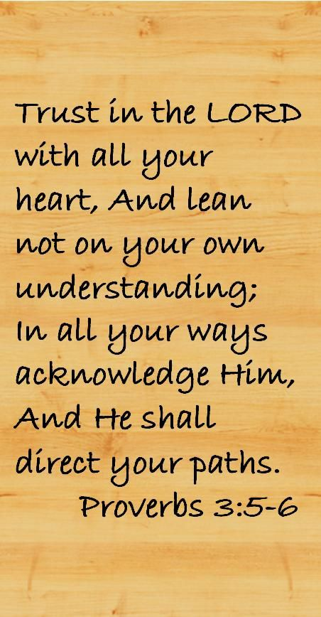 Lean not on your own understanding - I wasn't meant to understand that which I do not understand - I am to trust in the Lord.