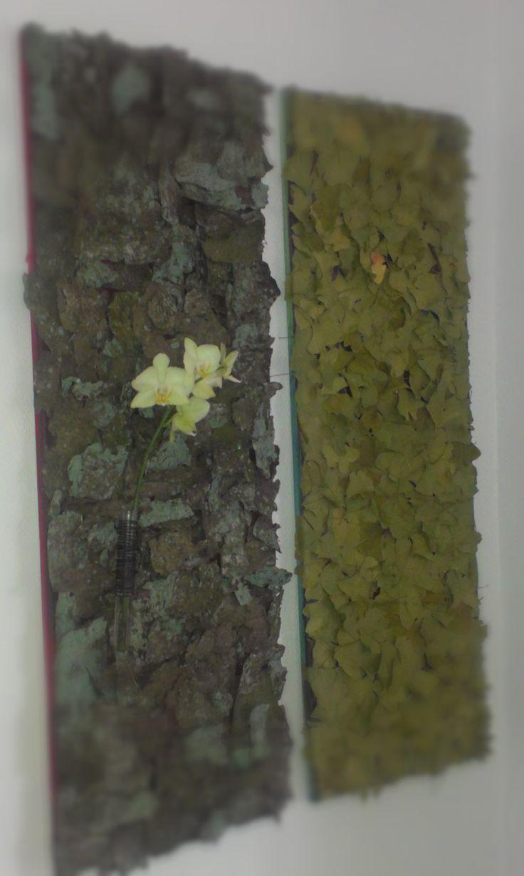 botaniske billeder, bark og gingoblade