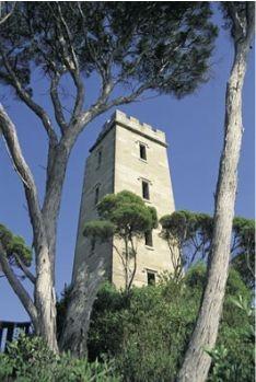 Ben Boyd Tower - Eden NSW