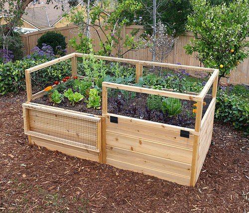 3 X 6 Raised Garden Bed With Hinged Fencing Garden Cedar