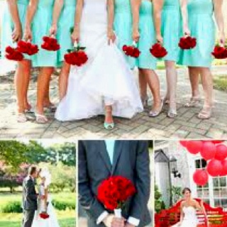 I Absolutely Love Plain Red Roses And Really Like The Light Blue With Them
