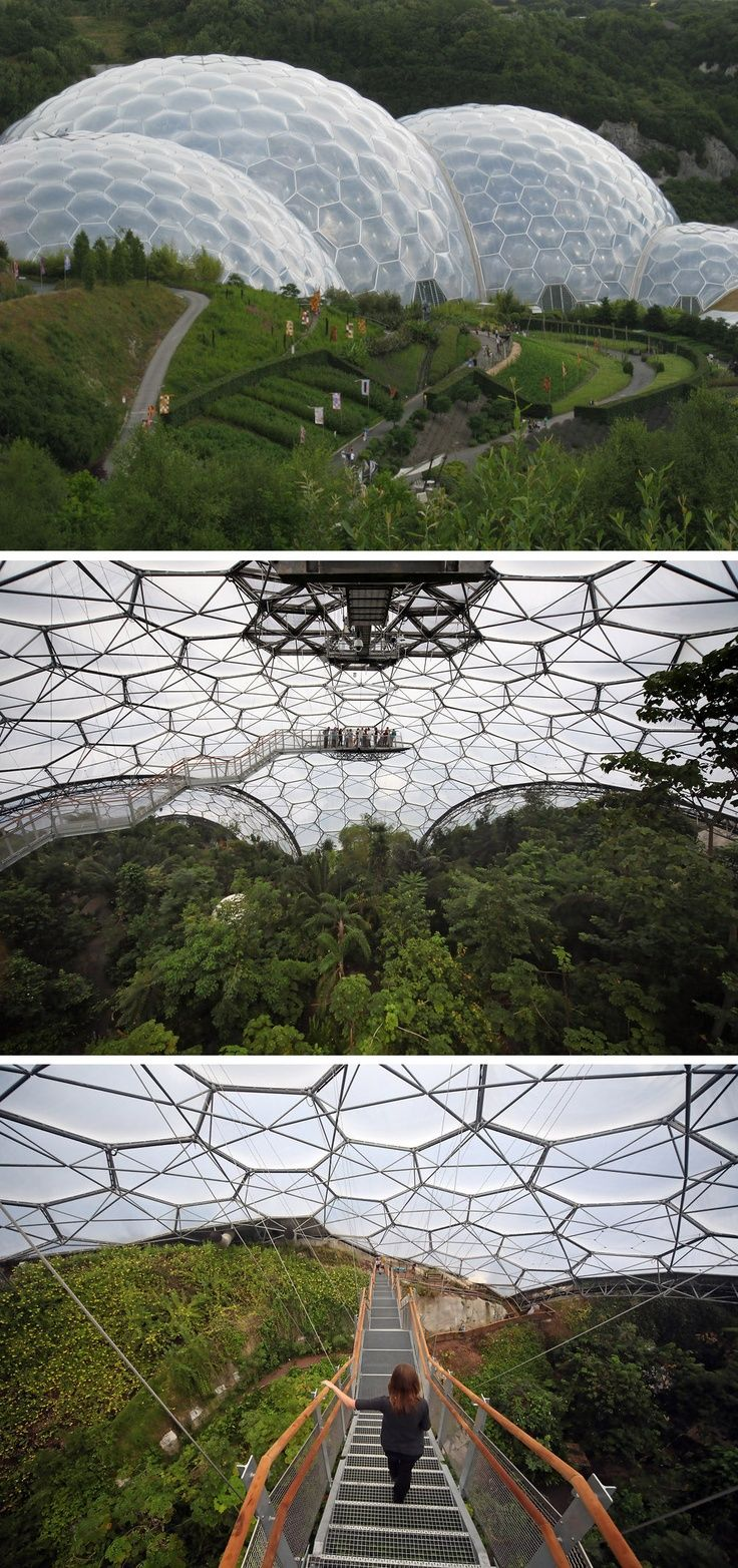 The Eden Project is a collection of giant biodomes in Cornwall, UK. Each domed garden houses a plethora of plants from all over the Earth, including the largest rainforest in captivity