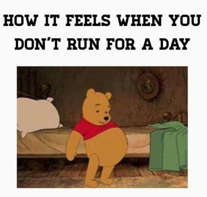 How I'm feeling today...<<Same. Rest day? More like feeling fat and cursing yourself day...