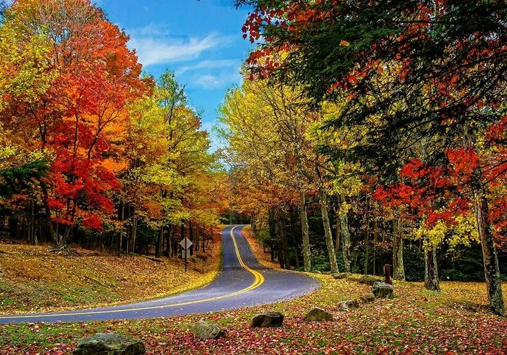 17 best images about almost heaven west virginia for West fall