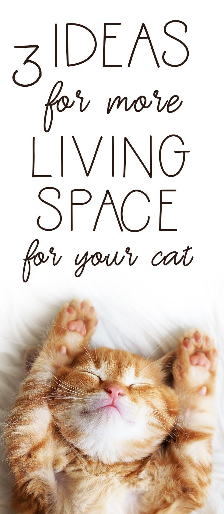 Best Space Saving Cat Litter Box Ideas Saving Cat Litter Box Cat And Dog Memes