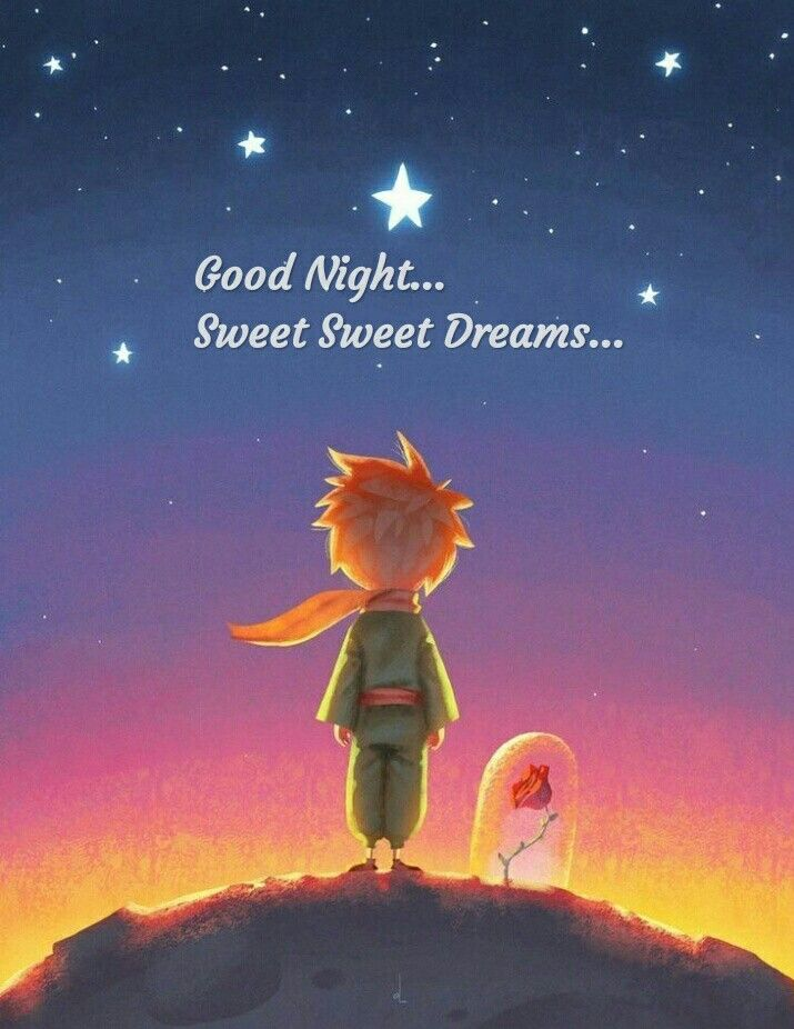 Good Night The Little Prince The Little Prince Movie Illustration