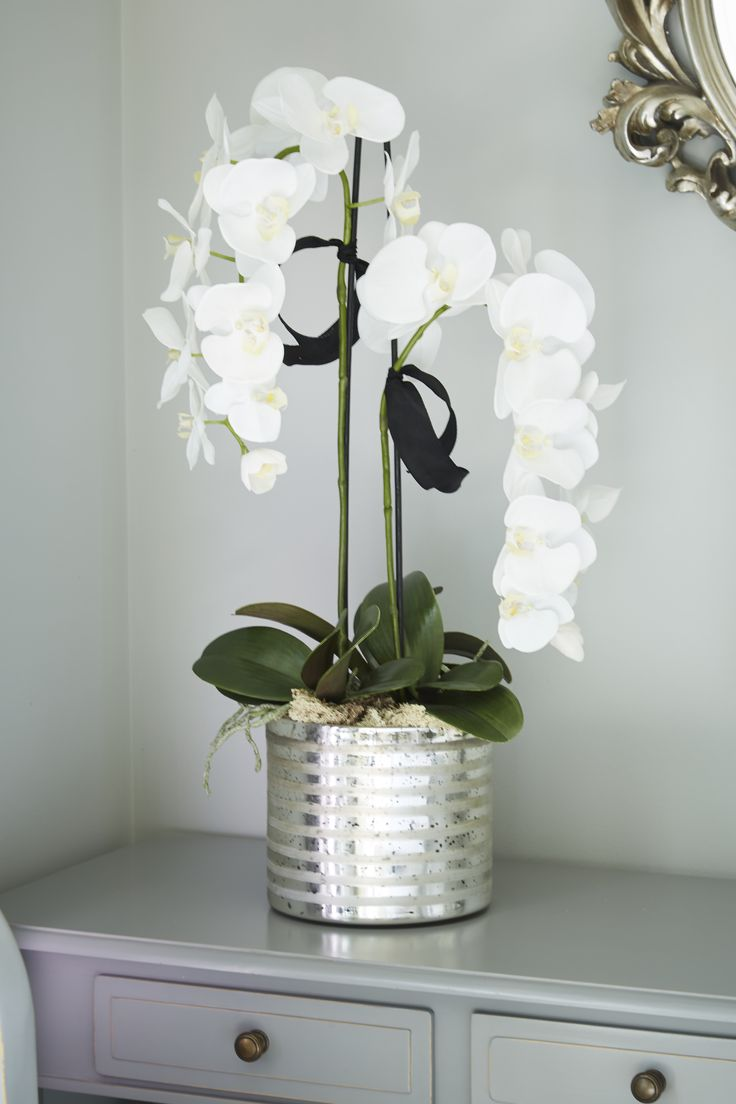 25 trending artificial orchids ideas on pinterest. Black Bedroom Furniture Sets. Home Design Ideas