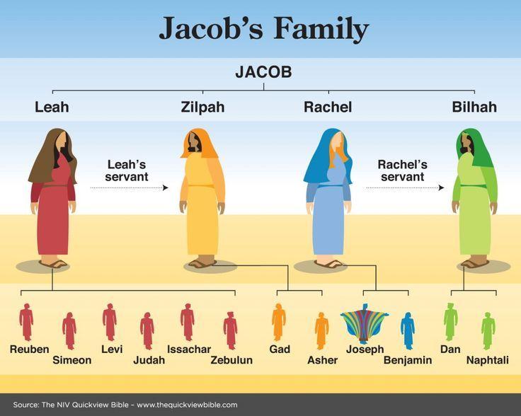 Jacob's Family Tree | Wall & Family Tree Ideas | Pinterest | Families ...
