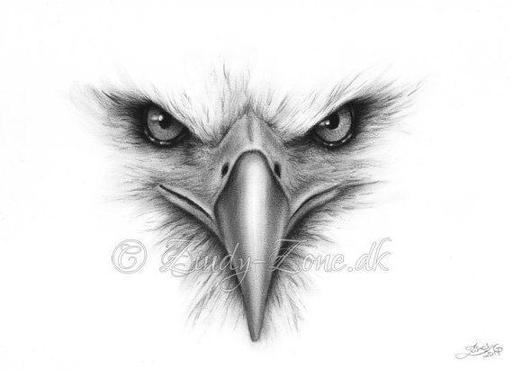 Face of an Bald Eagle Portrait Emo Goth Animal Bird Fantasy Girl Zindy Nielsen