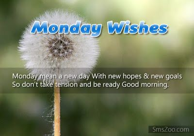 happy monday images funny http://www.wishesquotez.com/2016/10/happy-monday-and-good-morning-wishes.html