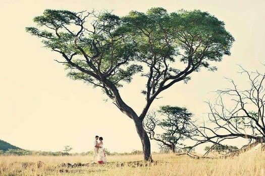 Our Africa wedding...