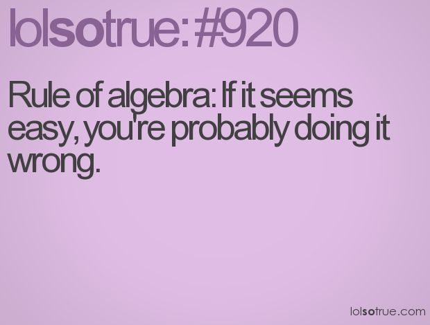 Because one does not simply understand algebra...or math in general.