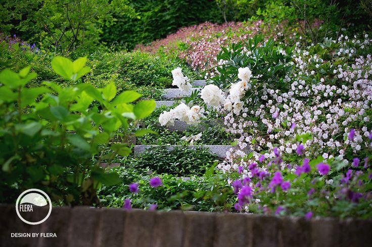 Rozkvitnutá záhrada s bohatou zeleňou a krásnymi kvetmi