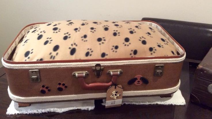 Up cycled vintage suitcases into funky pet beds. Available to purchase this Sunday 7 June at Belgrave South Community Market, Community Hall, Gilmore Court, Belgrave South.