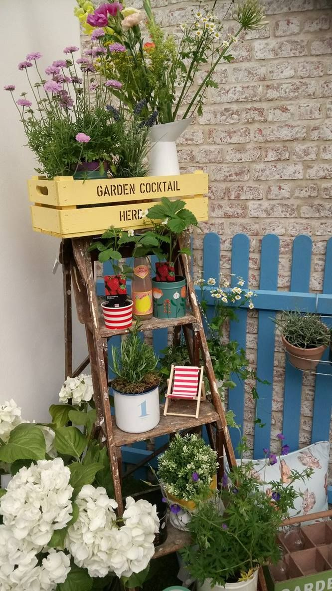 Turn some old step ladders into a quirky garden feature by displaying plants and…