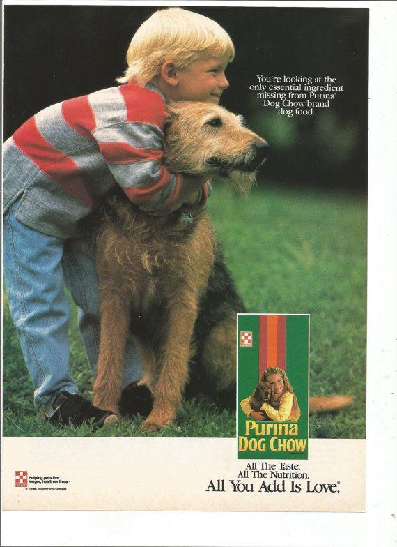 1989 Advertisement Purina Dog Chow Boy and His Dog Schnauzer