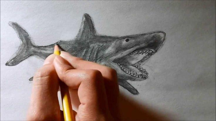 Uit dit filmje heb ik eigenlijk de meeste inspiratie gehaald voor het tekenen van mijn haai.