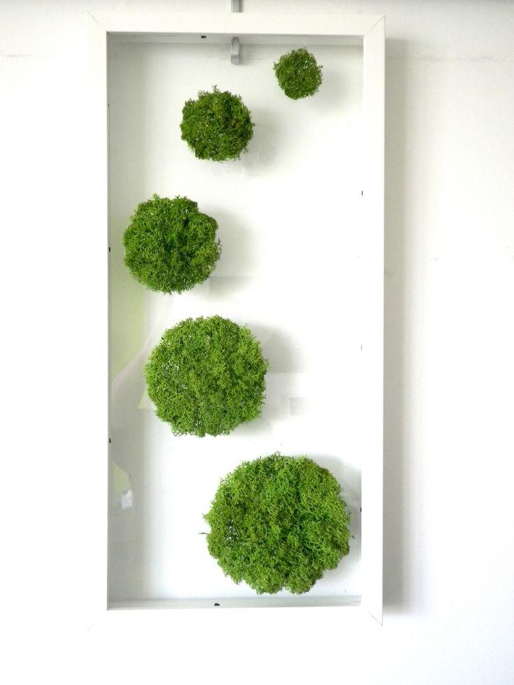 décoration tableau vegetal