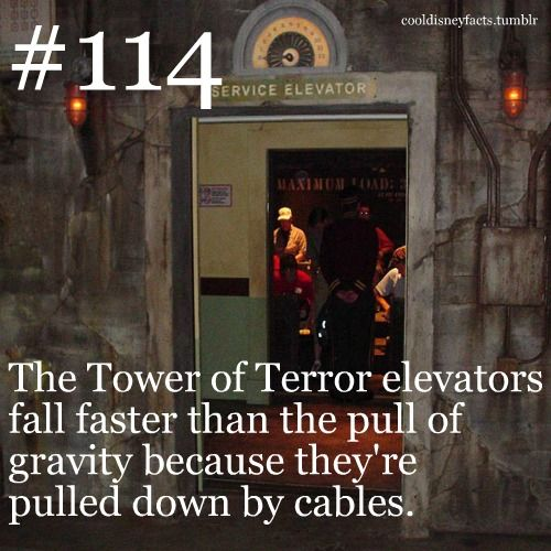 Cool Disney Facts: The Tower of Terror elevators fall faster than the pull of gravity because theyre pulled down by