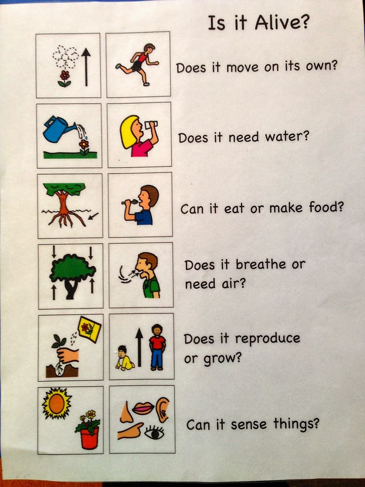 This is an example of a useful chart that children can reference when determining if something is alive. It lists the characteristics of living things using words and pictures. This presentation format is helpful for students of different learning styles and ELL students because the chart uses two forms of communication. This would be useful to describe the basic needs of living things.