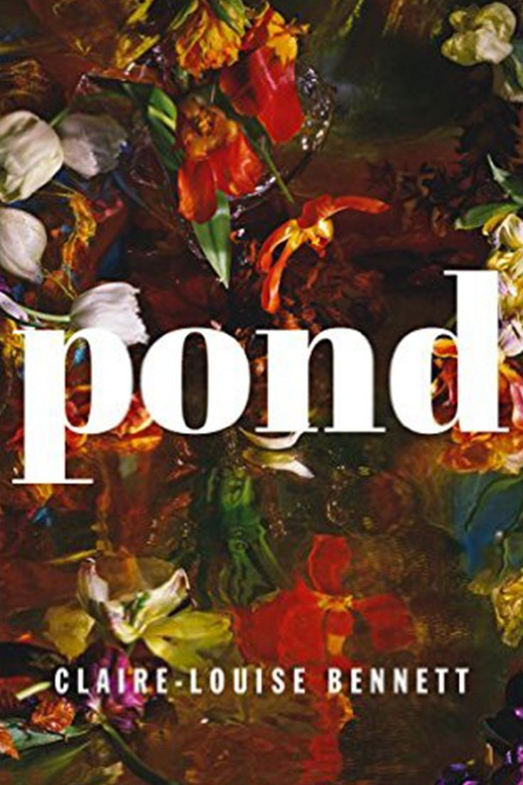 Pond Makes The Case For Bennett As An Innovative Writer Of Real Talent  [it]reminds Us That Small Things Have Great Depths
