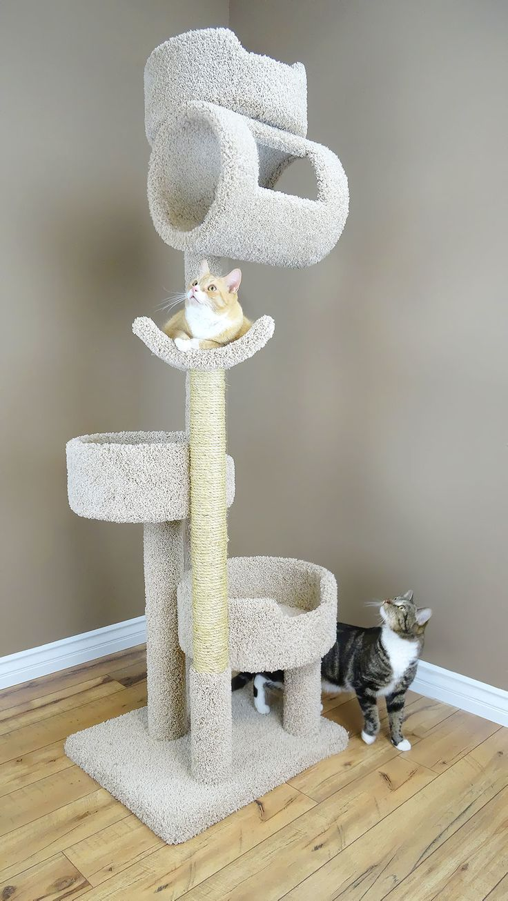 Features:  -Premier collection.  -Made from wood, plush household grade carpet, unoiled sisal rope, and sonic tubes.  -Made in the USA.  -Twin size.  -Top tube on the cat tree does have opens sides.