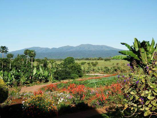 Ngorongoro Farm House, Tanganyika Wilderness Camps: le jardin