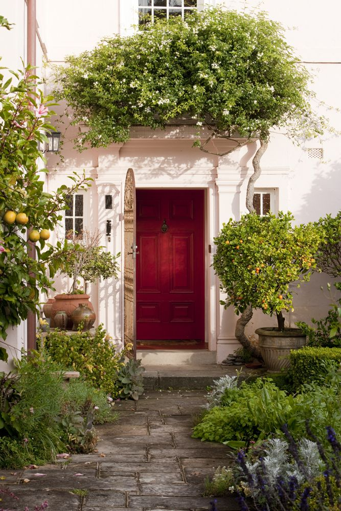 Vine above door.