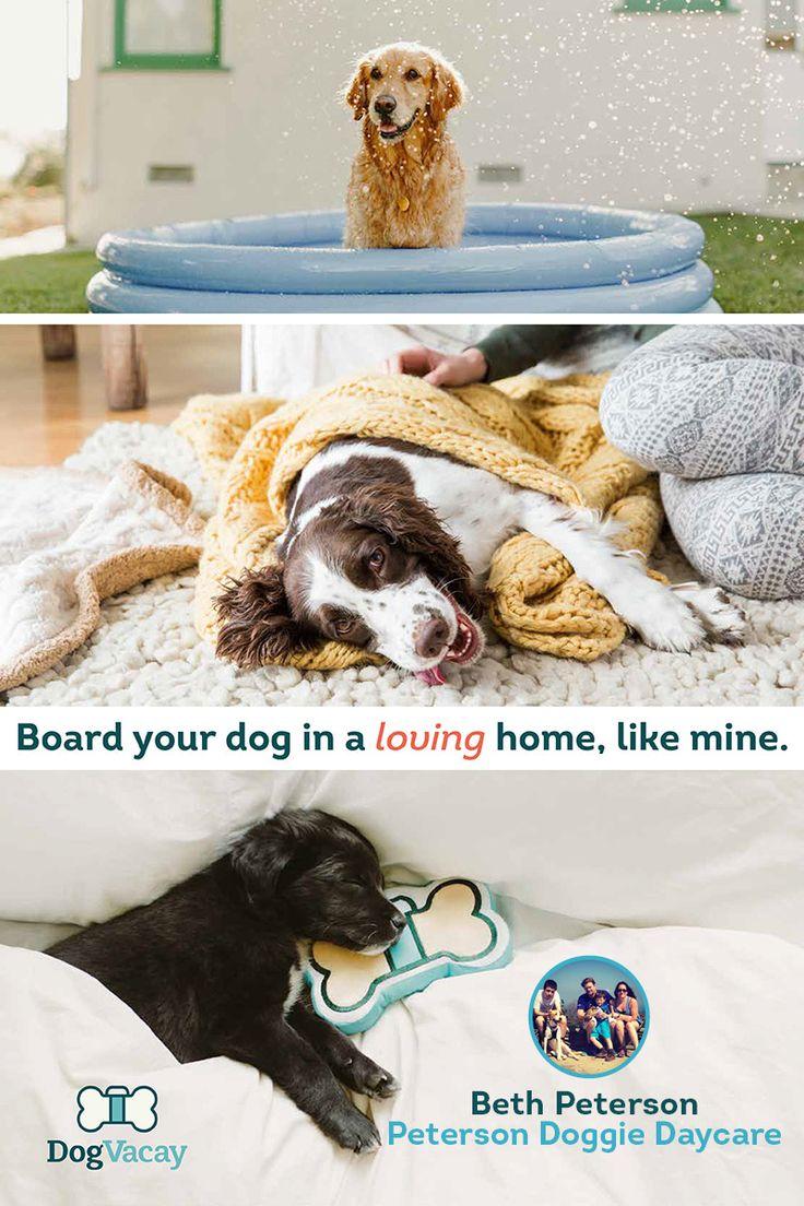 333379_r00001_p001.jpg (800×1200) Dogs, Pet care dogs