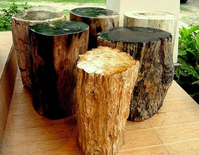 """Check out this @Behance project: """"PETRIFIED WOOD STUMPS"""" https://www.behance.net/gallery/28143913/PETRIFIED-WOOD-STUMPS"""
