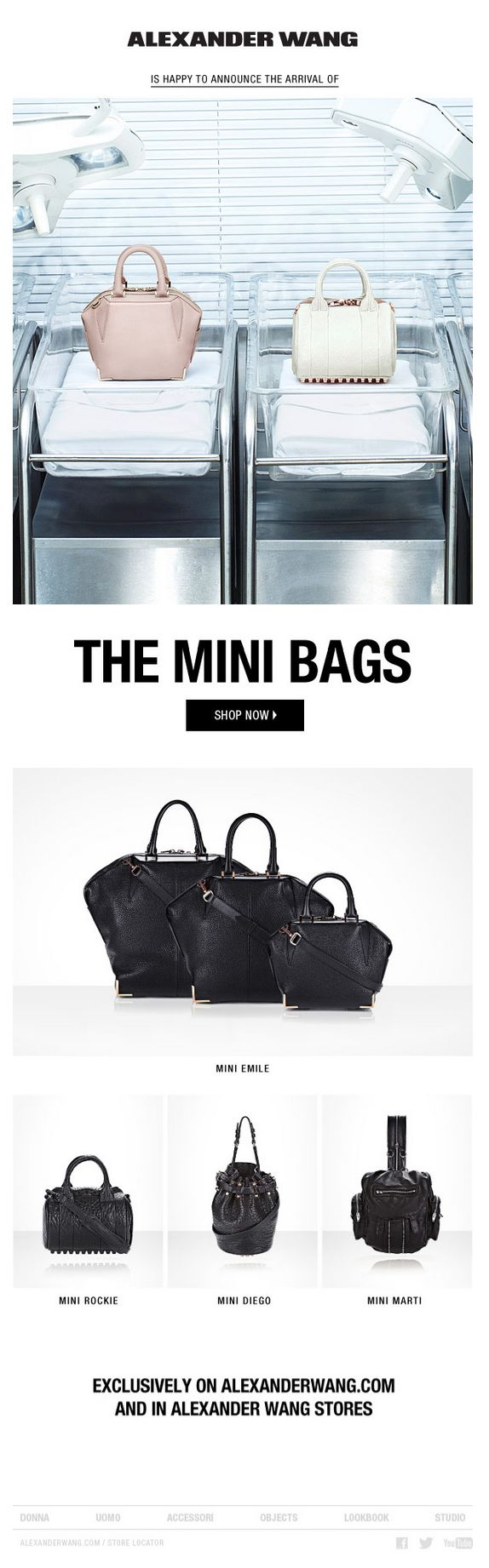 Alexander wang special delivery the mini bags