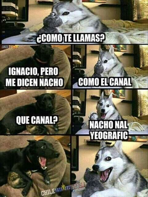 #chiste #humores