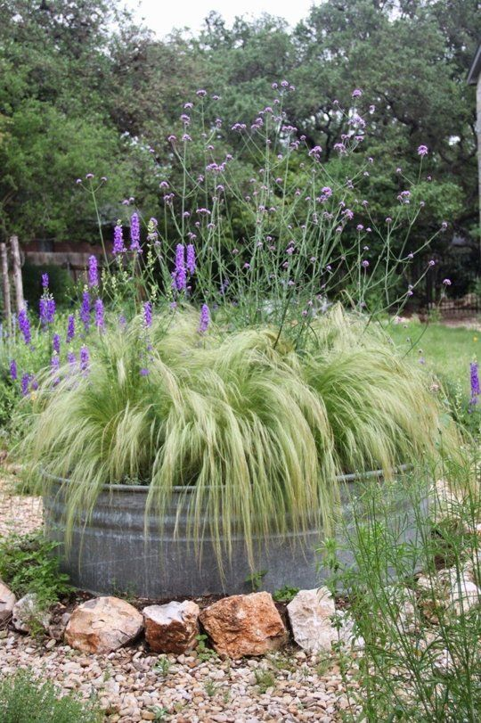 Galvanized tub filled with ornamental grass. For the backyard by the neighbor's garage?