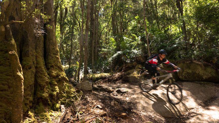 North East Tasmania is a premier mountain biking destination. We ll be back.