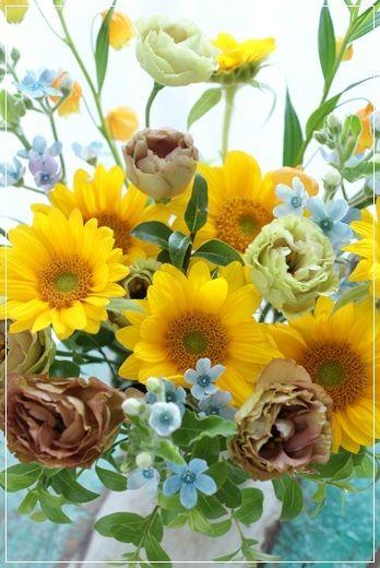 【今日の贈花】わんこへ 可愛いお供えのお花♪|Flower note の 花日記 (横浜・上大岡 アレンジメント教室)