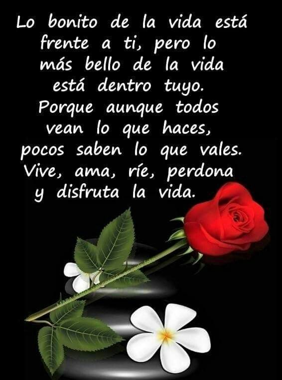 Pin By Judith Tiza On De Todo Un Poco In 2020 Good Morning Quotes Life Quotes Spanish Inspirational Quotes