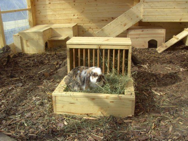 Kaninchen Gehege